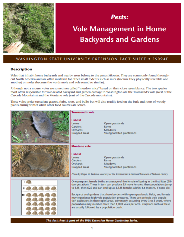Vole Management in Home Backyards and Gardens (Home Garden Series), FS094E brochure cover