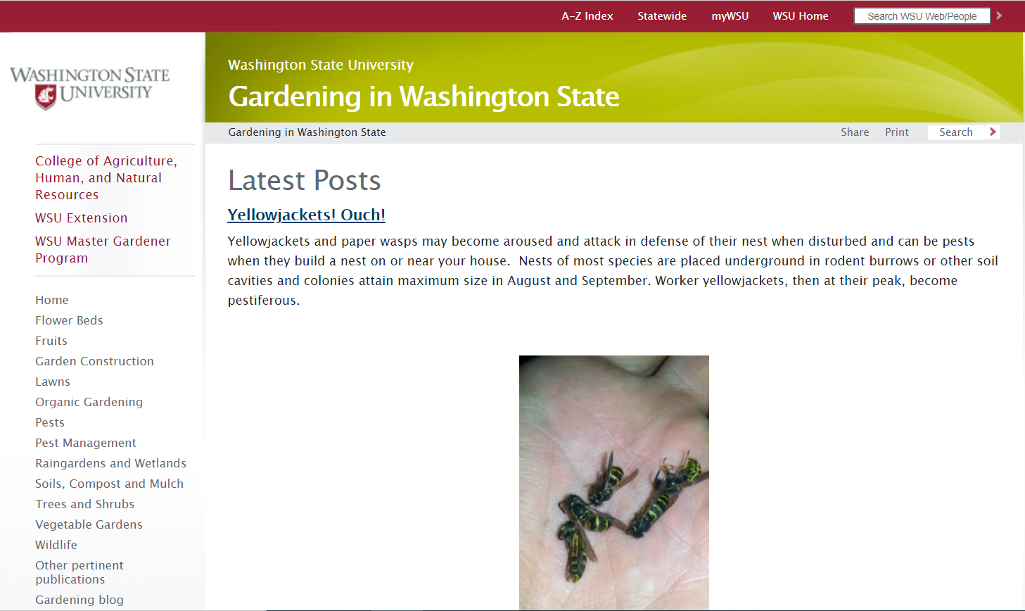 WSU - Gardening in Washington state home page