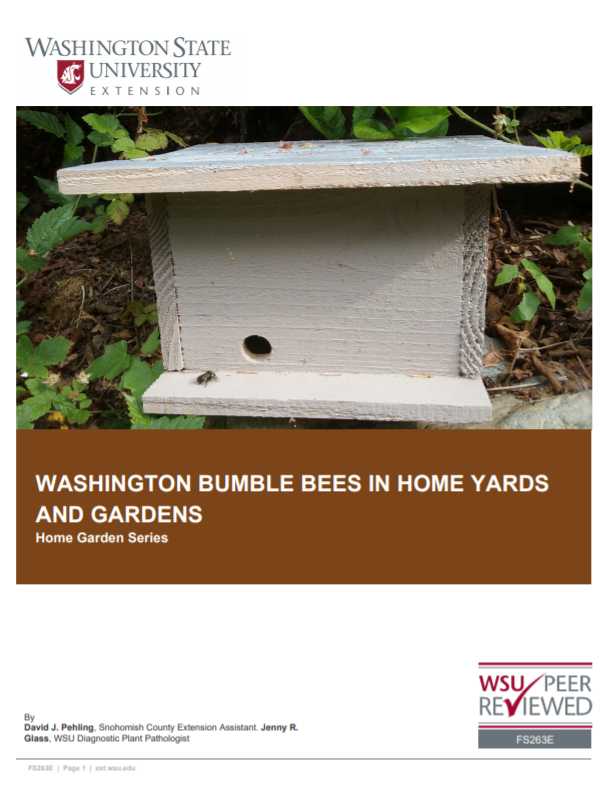 Washington Bumble Bees in Home Yards and Gardens, FS263E brochure cover