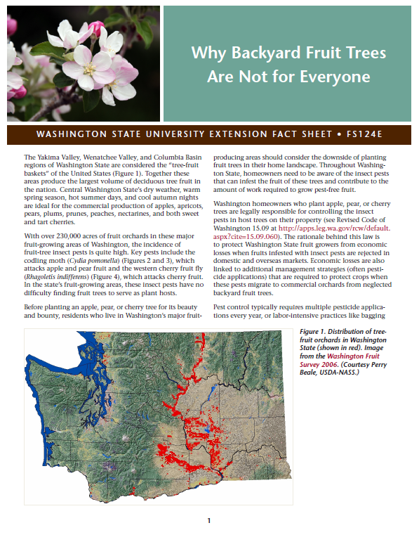 Why Backyard Fruit Trees Are Not for Everyone brochure cover with fruit tree blossom and map of distribution of fruit tree orchards in Washington state