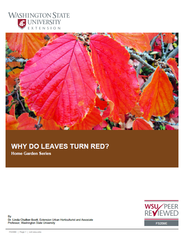 Why-do-Leaves-Turn-Red-Home-Garden-Series-FS209E brochure cover