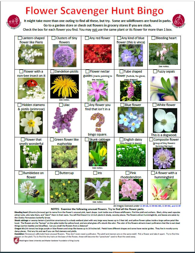 Flower Scavenger Hunt or Bing Activity