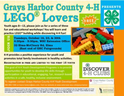 Discover 4-H Flyer - LEGO Fun