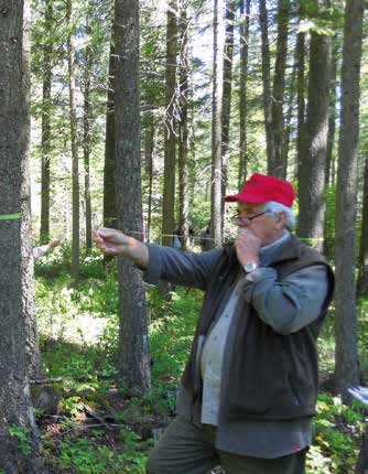Forest stewardship instructor demonstrating