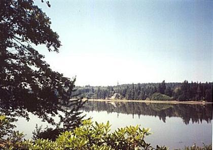 water view (Custom)