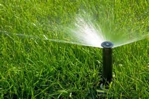 lawn irrigation pop up head