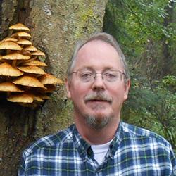 Scott Mushroom Tree Double Cropped