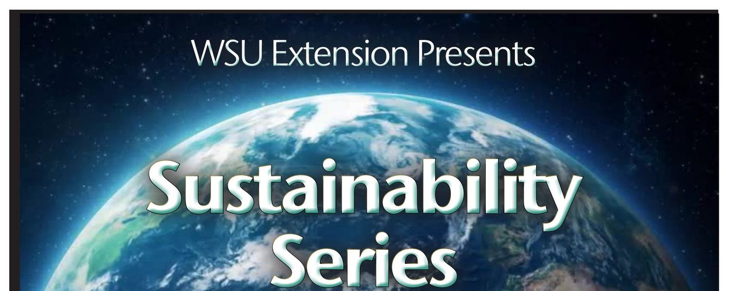 Sustainability Series cover logo