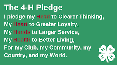 The 4-H Pledge: I pledge my head to clearer thinking, my heart to greater loyalty, my hands to larger service, my health to better living, for my club, my community, my country, and my world.