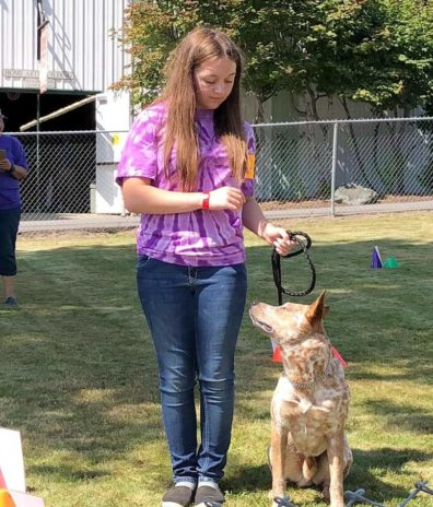 youth showing a dog at the fair