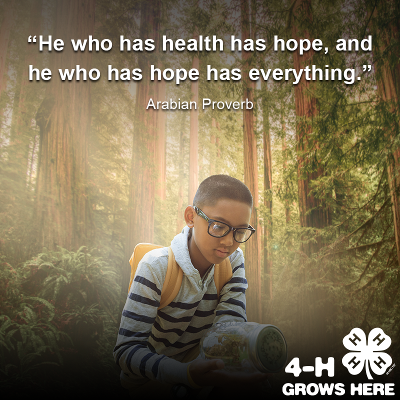 Photo of child in the woods with a quote about health
