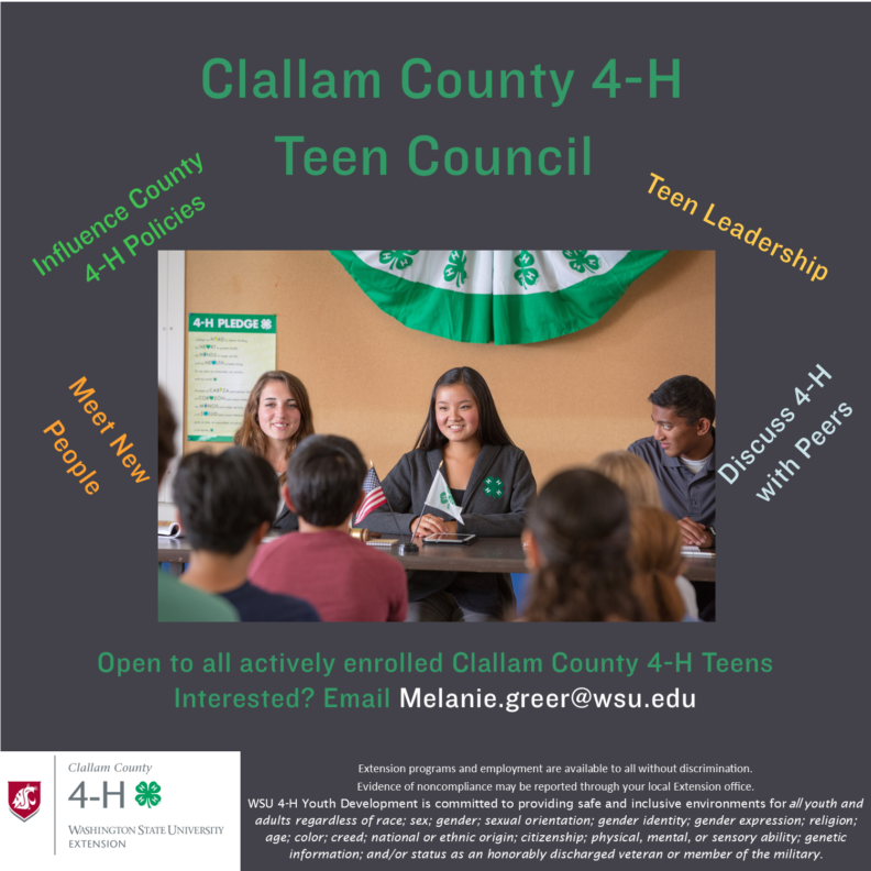 image of a teen council in action