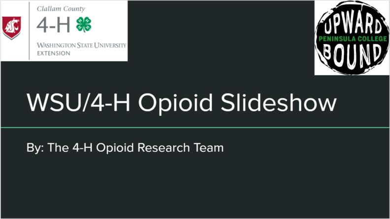 cover page of opioid slideshow