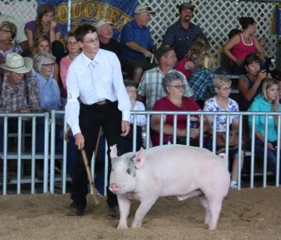 Swine2013