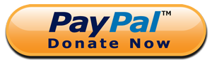PayPal donate now logo.
