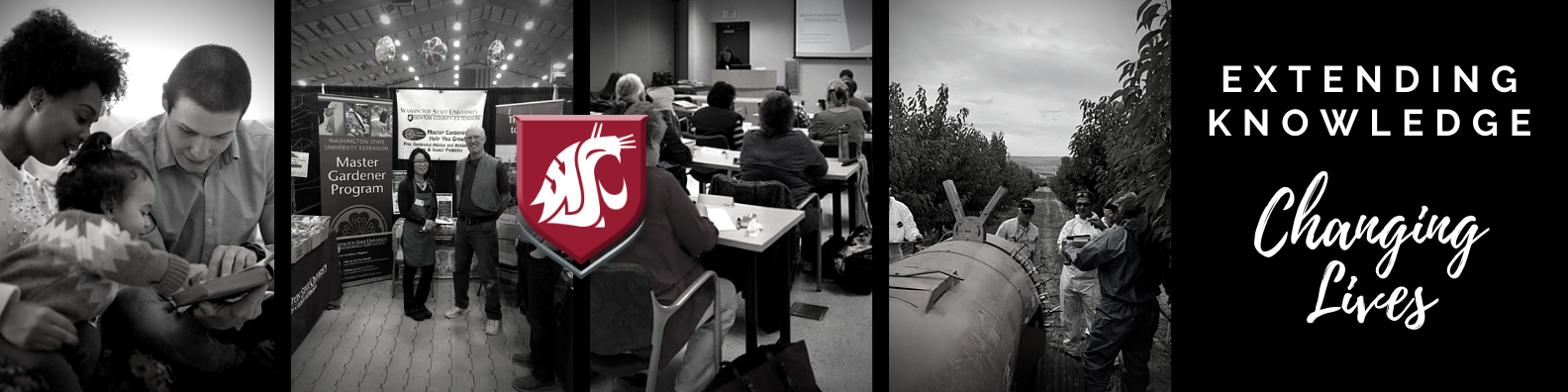 Extending Knowledge, Changing Lives. WSU logo over black and white pictures of people reading, Master Gardener booth, classroom learning and field learning.