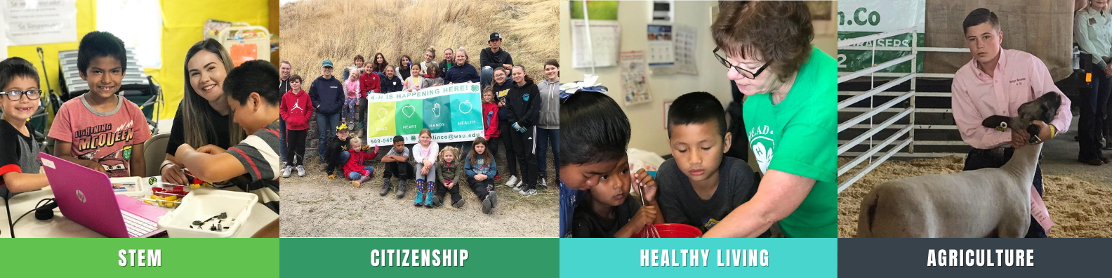 Stem, Citizenship, Healthy Living, Agriculture