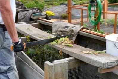 DG_Composting_ncrowell_20150617
