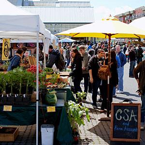 farmers-market-bellingham-wa-0711-m