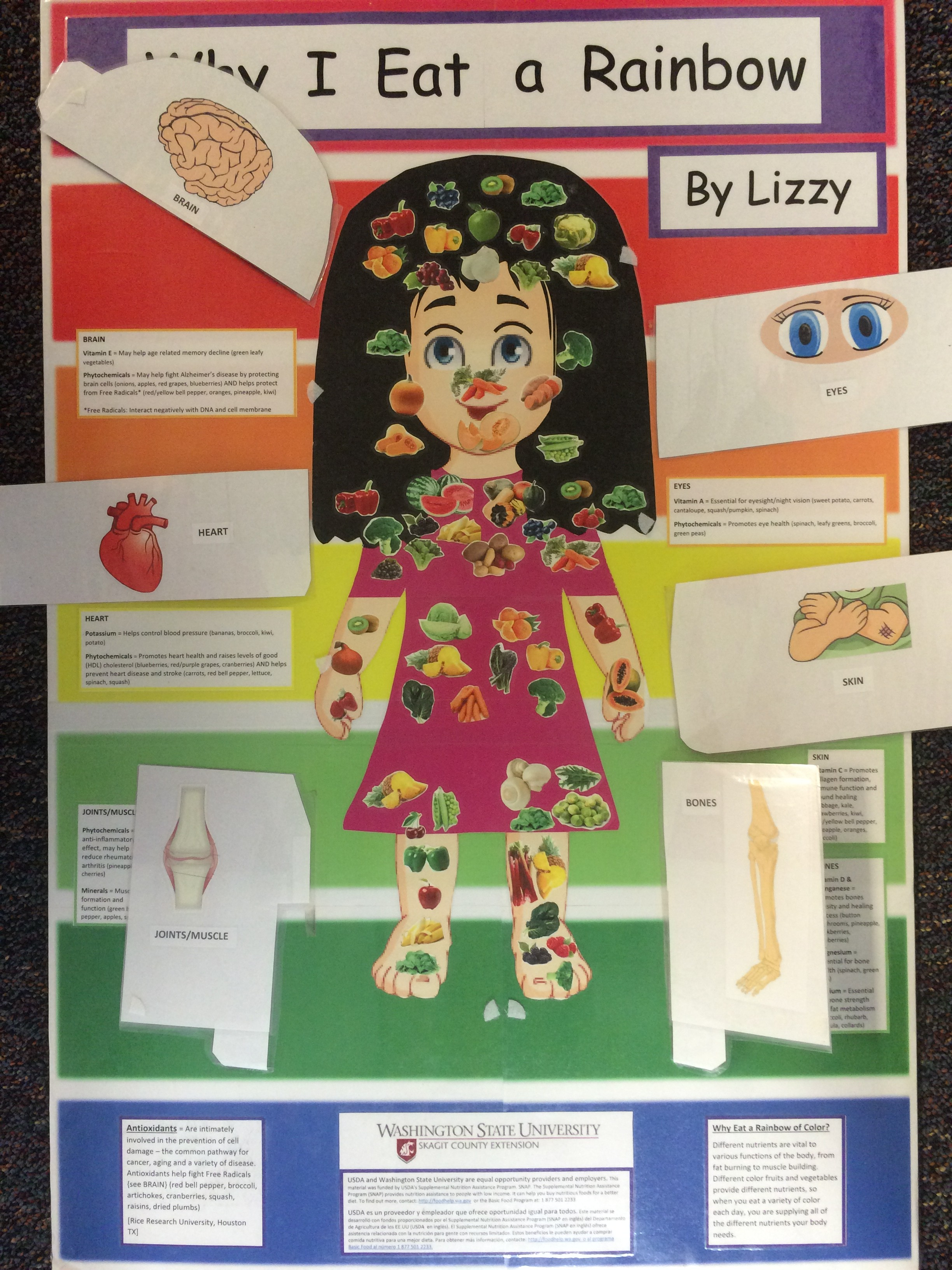 Lizzy Board Nutrient Contents