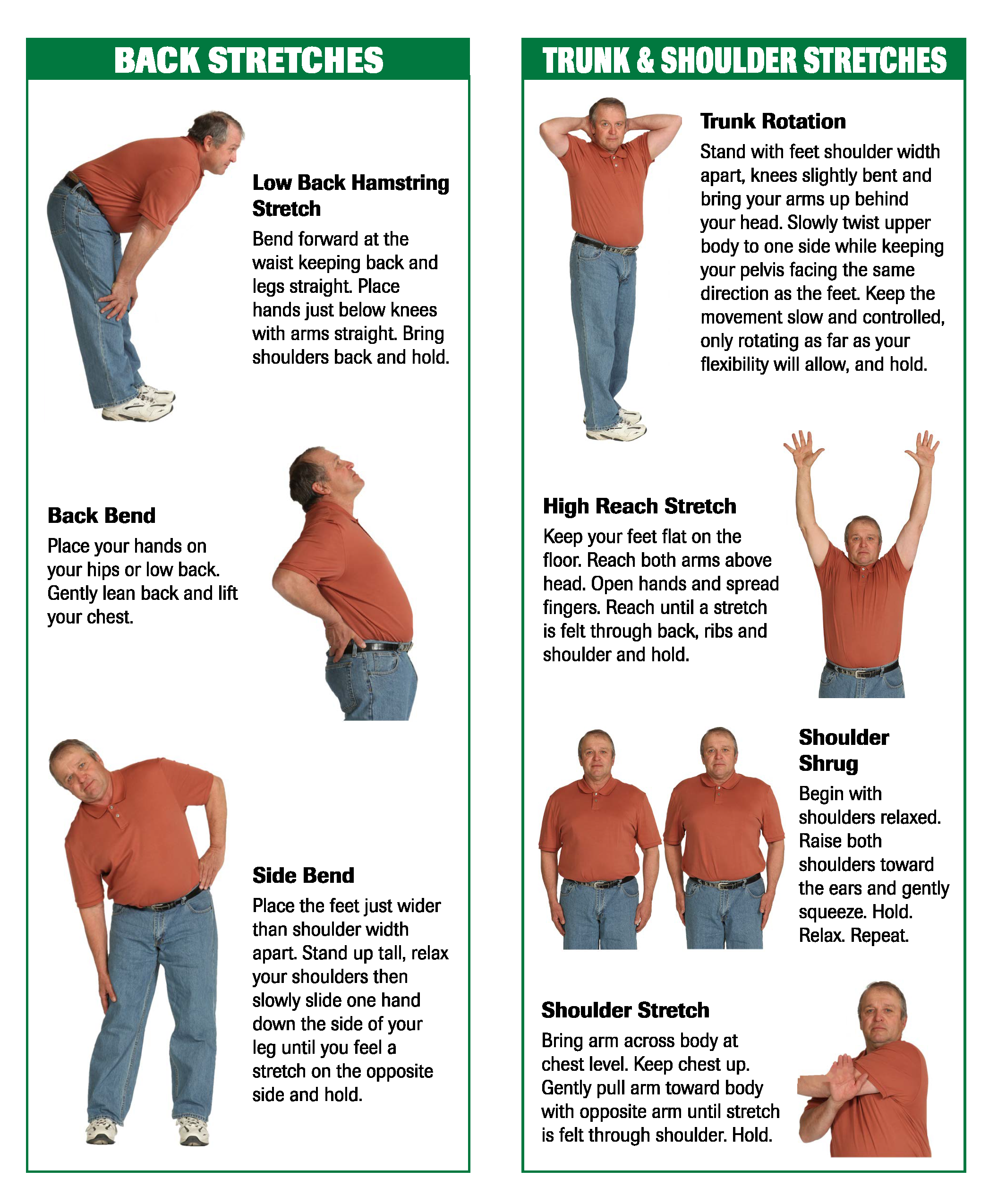 Stretching Brochure Image