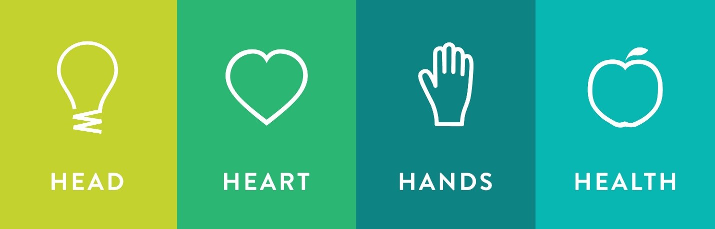 Head, Heart, Hands, Health band of icons