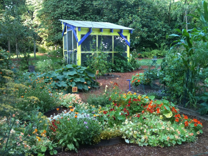 Master gardeners kitsap county washington state university for Septic design kitsap county
