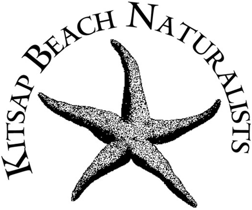 Kitsap Beach Naturalists