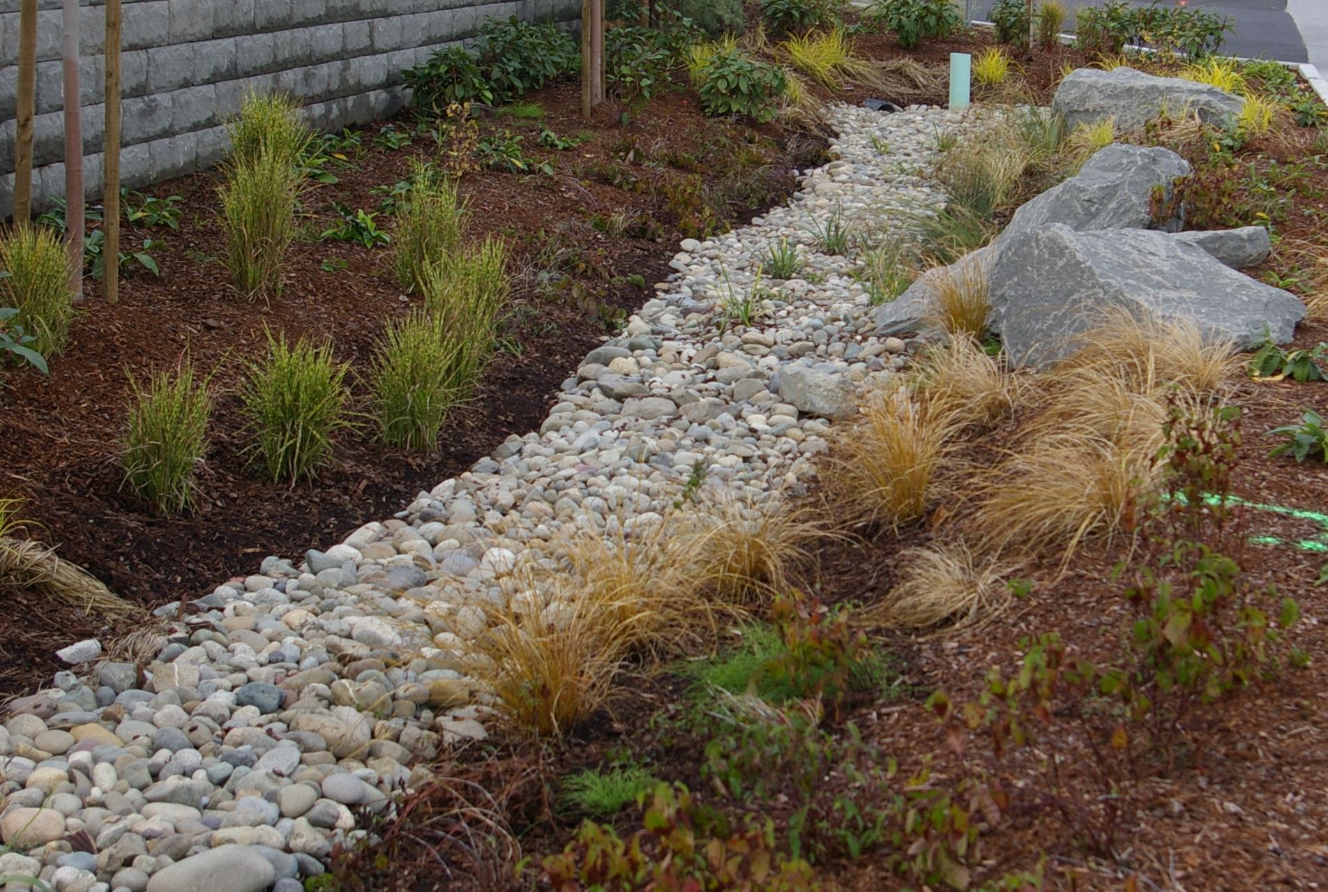 Professional Rain Garden Workshop 2016 | Kitsap County | Washington ...