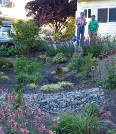 Rain Garden and Volunteers
