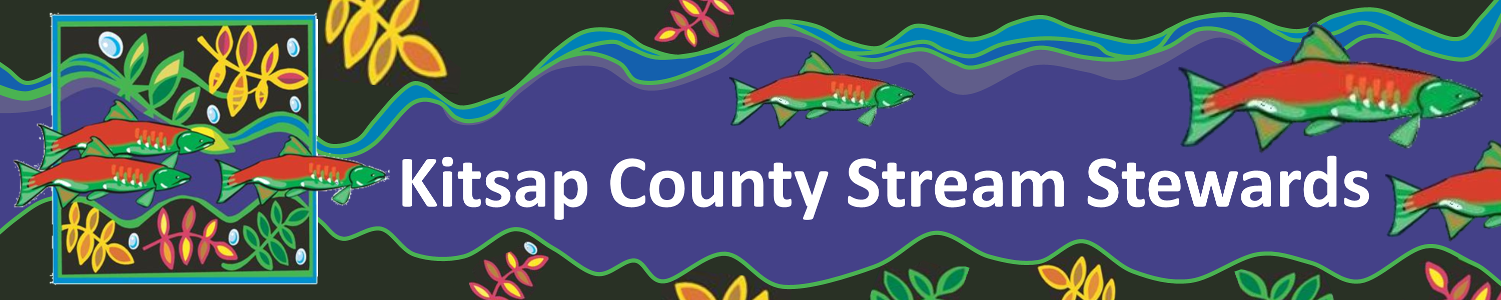 Kitsap County Stream Stewards