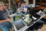 Kitsap Fresh, the county's online farmers market, continues to expand