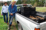 Gleaning spuds: Volunteers harvest potatoes for food bank