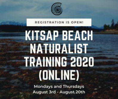 Beach Naturalist Training