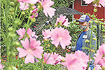 Master gardeners keep park flowers blooming