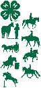4-H-horse-disciplines-panel