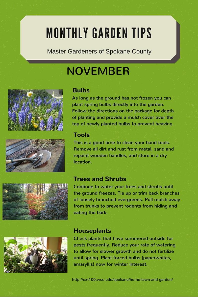 Incroyable Monthly Gardening Tips