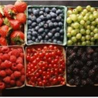 berries-and-small-fruits
