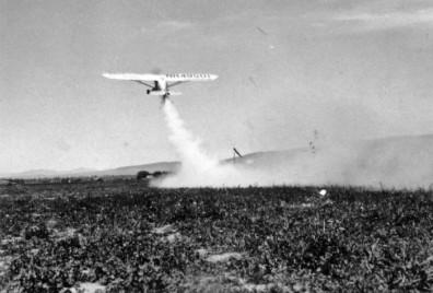 Pilot Passmore 1945 Kittitas Co.