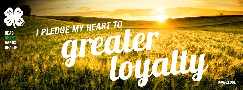 I pledge my heart to greater loyalty