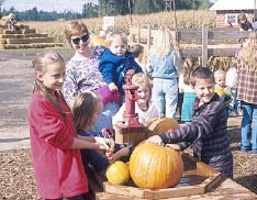 A bright sunny day in October is sure to attract visitors to a farm with pumpkins.