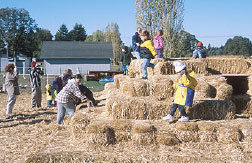 A hay-bale fortress is a simple and in-expensive form of agri-tourism popular with families with small children.