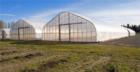 Greenhouse Structures Clark County Washington State