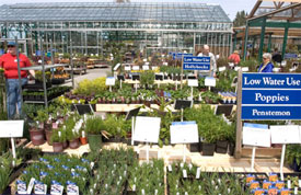 This high end independent garden center has an extensive array of plants, all clearly situated by use. The extensive use of signage is greatly appreciated by the serious gardener.