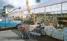 A spring scene from a popular southwest Washington garden center