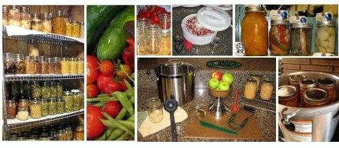Food_Preservation1