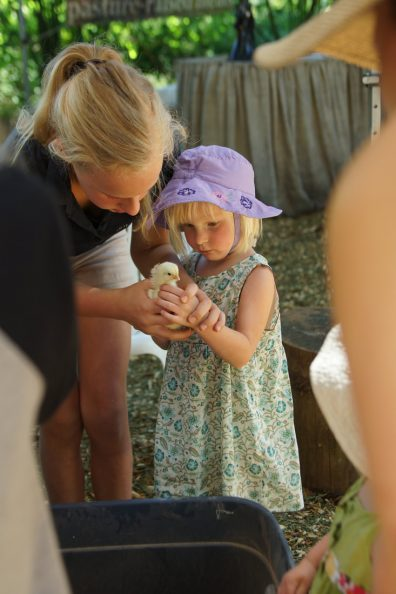 Little girl in a bucket hat and dress holding a baby chick with the assistance of an older girl.