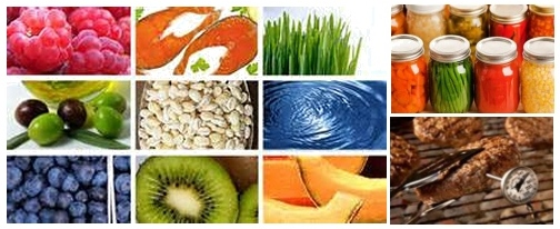 Food Safety, Nutrition and Food Preservation