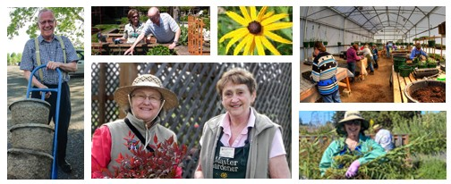 6-picture collage of man with hand truck and large containers; couple planting veggies; sunflower; 2 smiling MGs; MG holding weeds; MGs working in greenhouse.