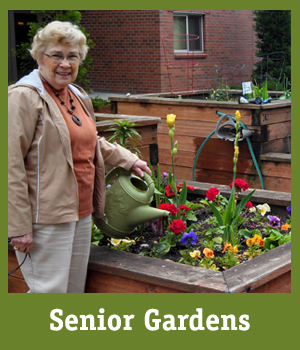 Senior Gardens